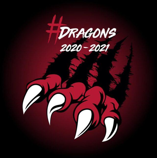 Dragons TV  Le Staff des Dragons se confie en vidéo !