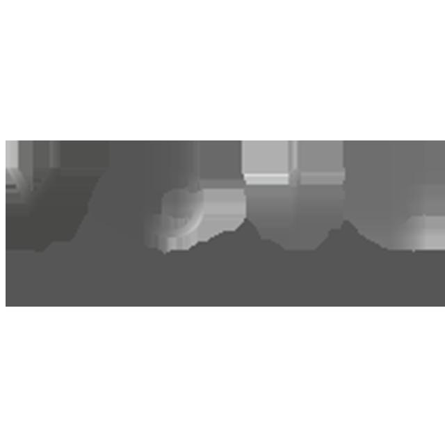 https://www.ascannesvolley.com/wp-content/uploads/2021/07/YGIE-logo.png